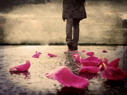 Rose_Petals_walking_on